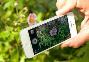 prendre-photo-avec-le-volume-de-l-iphone